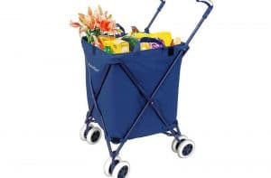 Top 10 Best Folding Shopping Carts 2021 Review