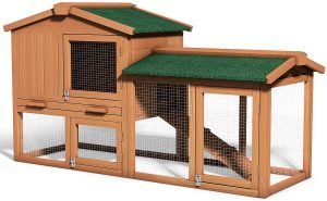 Best chicken coop for harsh weather
