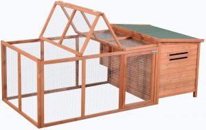Best chicken coop for easy cleaning and maintenance