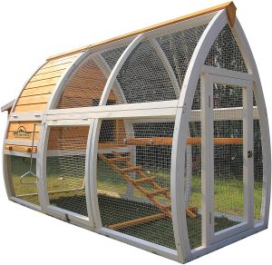 Best chicken coop for long-term service