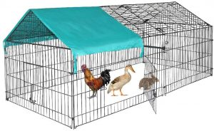 Best chicken coop for durability
