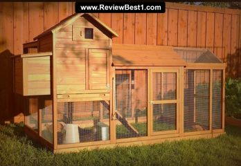 Top 10 Best Chicken Coops 2020 Review