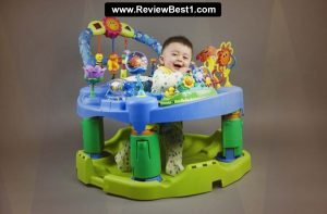 Top 10 Best Baby Einstein Jumpers 2020 Review